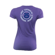 Womens Authentic Performance V Neck - Blue Iris