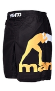 Fight shorts PRO 2.0 - Black